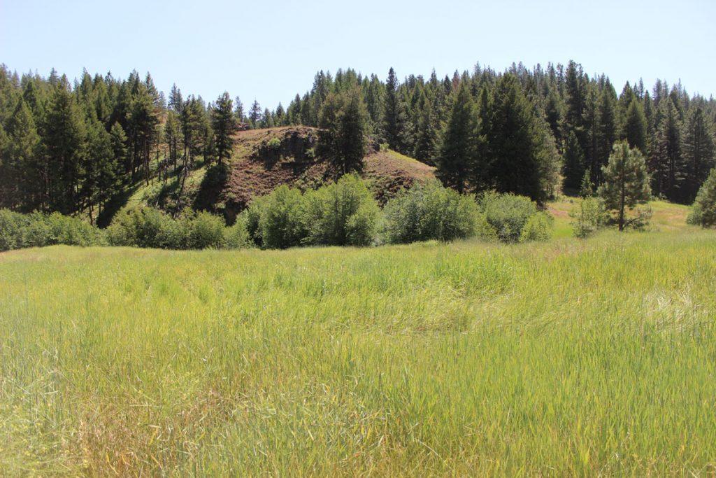 elk-creek-gallery-03