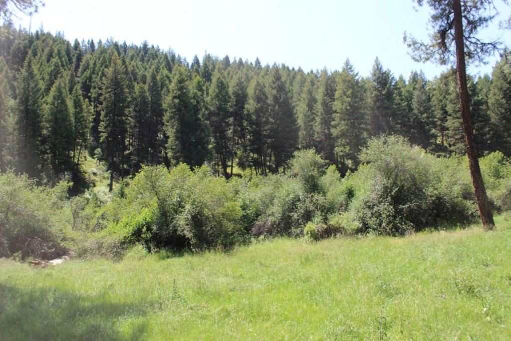 elk-creek-gallery-06