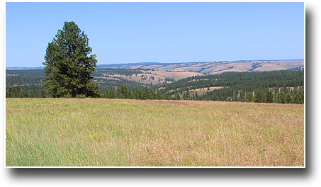 elk-creek-inset