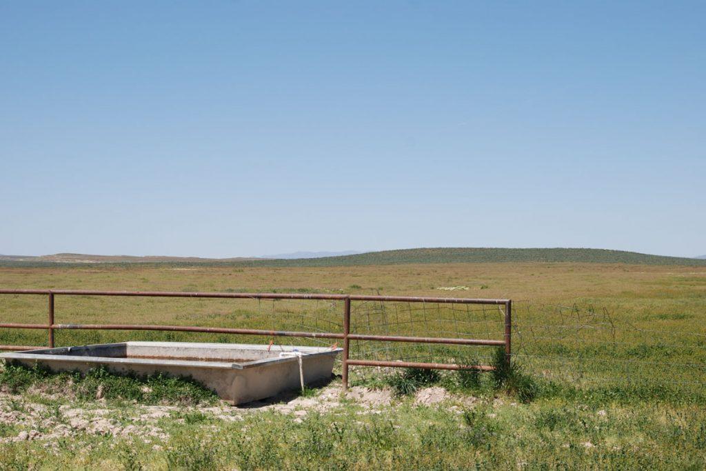 foss-ranch-gallery-07
