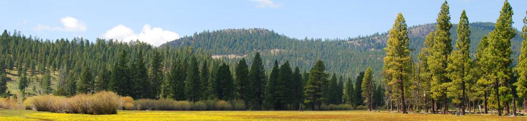 lakeview-cottonwood-creek-lead-3